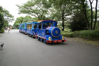 Dsc00890